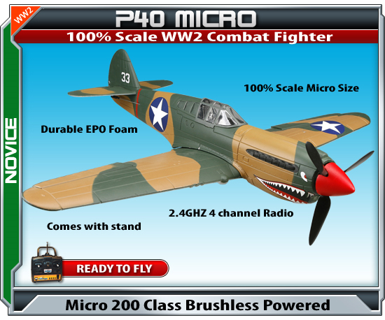 Radio Controlled Jets Park flyers P40 Micro