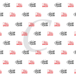 custom step and repeat banner sample with one logo