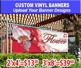 graphic banner sample