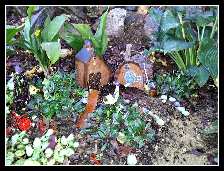 Best Integration of Plants Fairy Garden Contest Winner