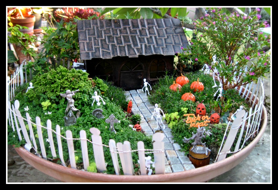 Grand Prize Fairy Garden Photo Contest Winner