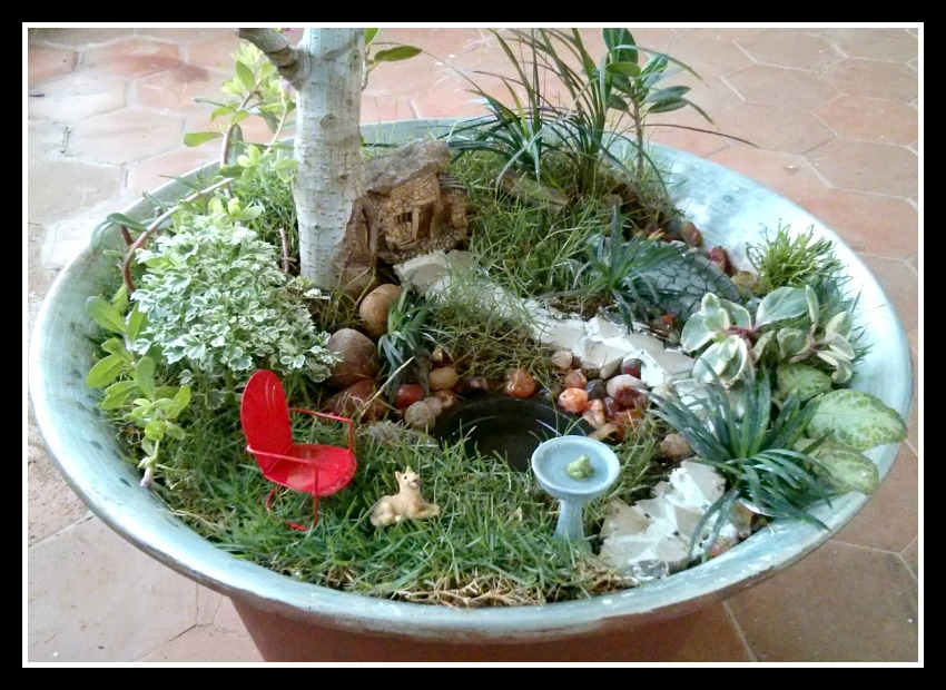 Lush Tropical Fairy Garden Oasis - Up Close
