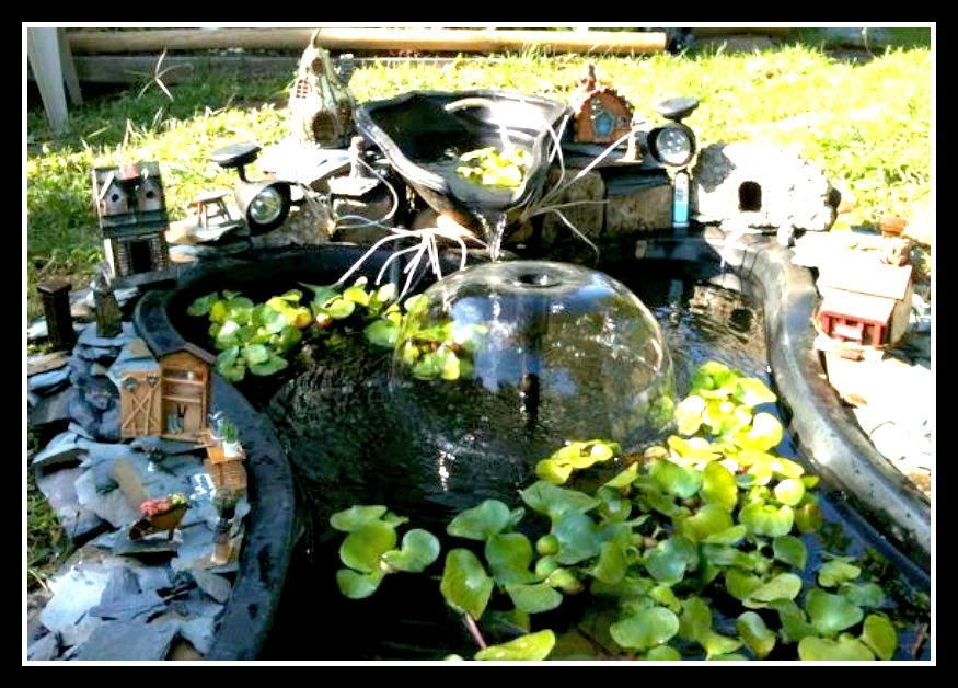Most Eco-Friendly Fairy Garden Contest Winner