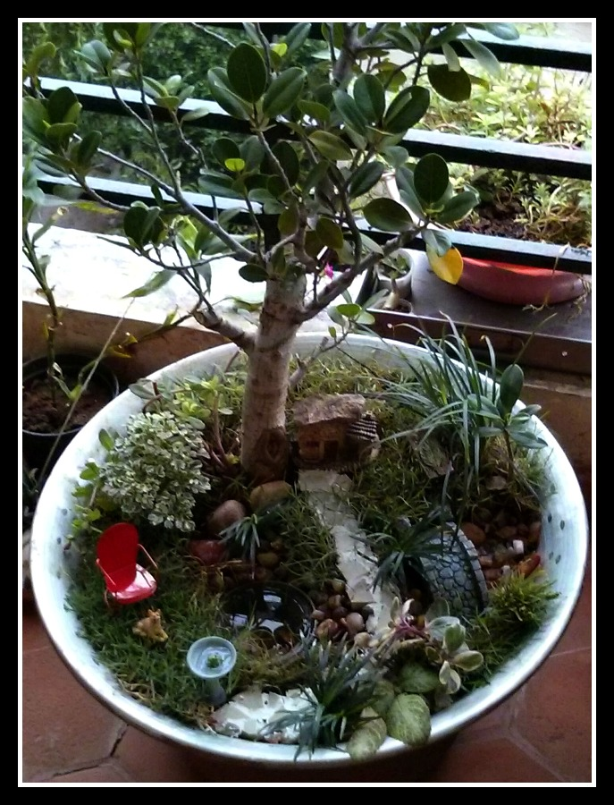 Overhead Shot - Citrus Tree Above Miniature Gardens Pond Scene