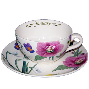 month flcup february