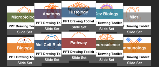 Ready to Use and Easy to Edit PowerPoint Drawing Diagrams