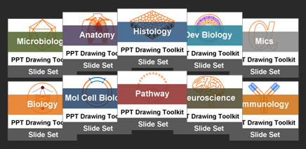 Biomedical PowerPoint Drawing Diagram Toolkit Suite