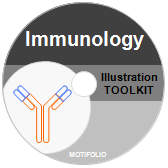 PowerPoint Drawing Toolkit Immunology