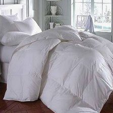 Down & Down Alternative Comforters