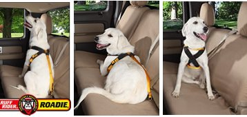 roadie dog harness instructions